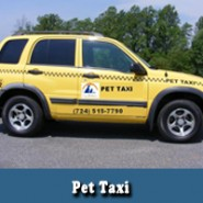 Pet Taxi