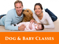 dog-baby-classes