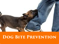 dog-bit-prevention