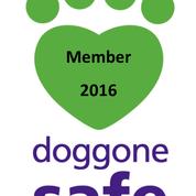 doggone safe 2016