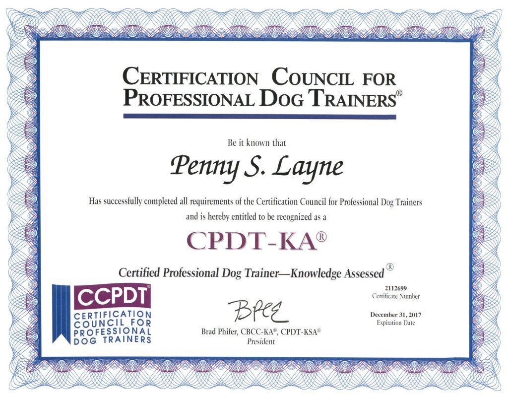 Penny is a Nationally Certified Professional Dog Trainer