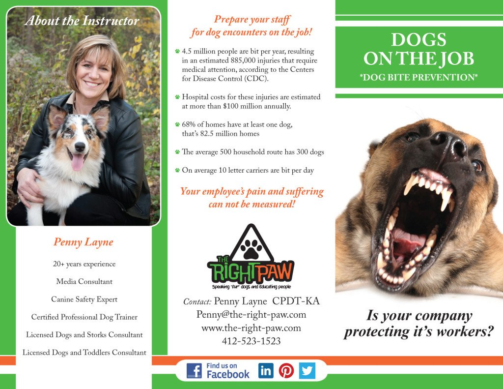 Canine Safety Brochure-1-9