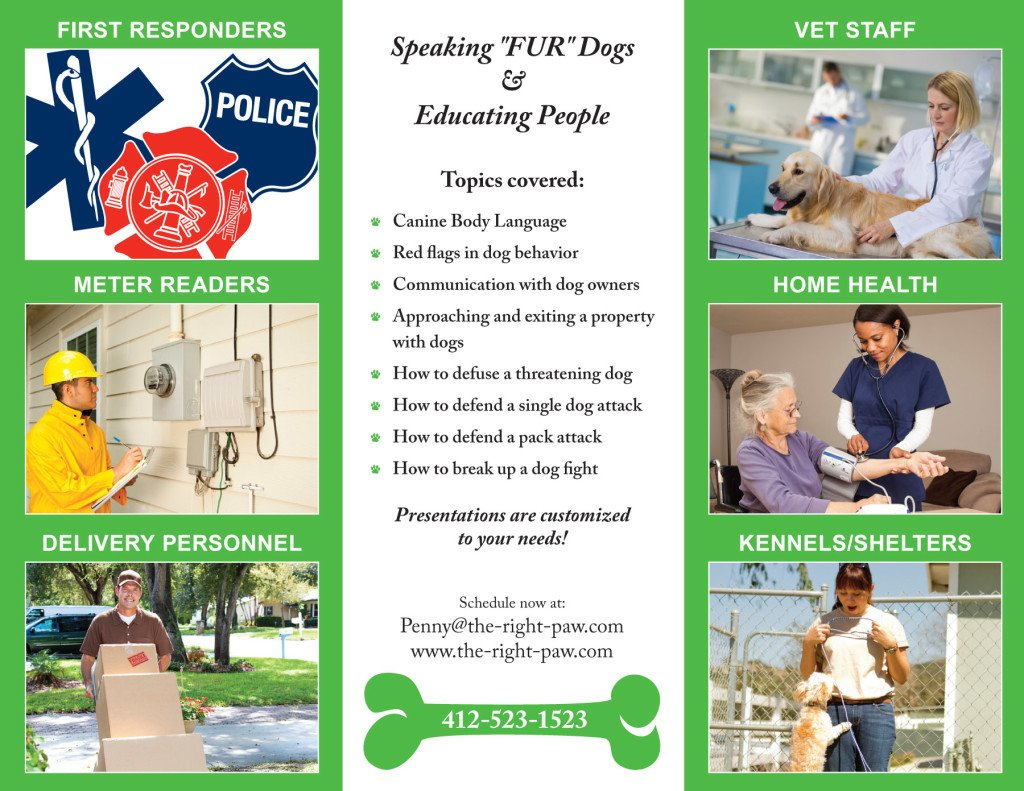 Final Canine Safety Brochure-2