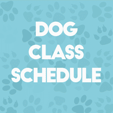 Classes and training schedule
