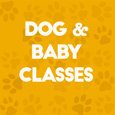 Dog Baby Classes