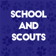 school and scouts
